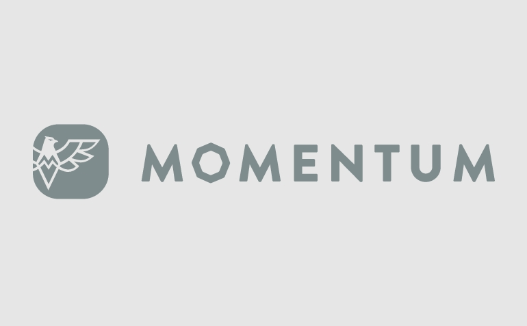 Momentum IoT