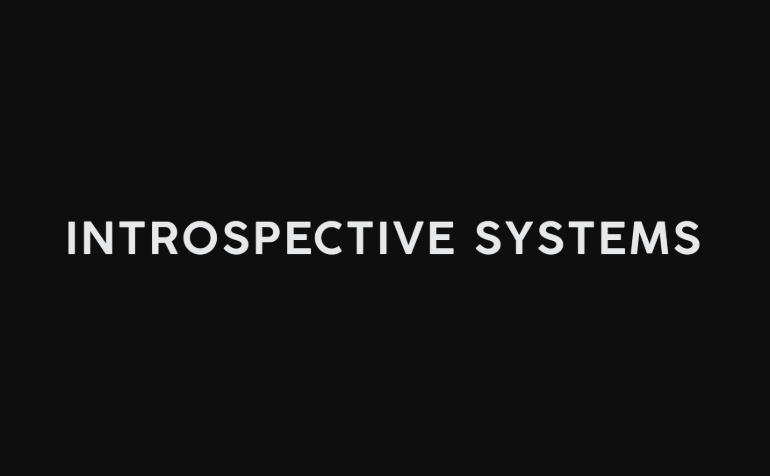 introspective systems