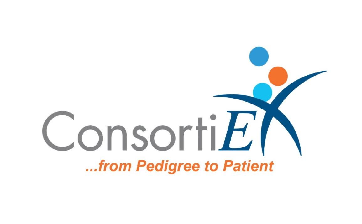 ConsortiEX