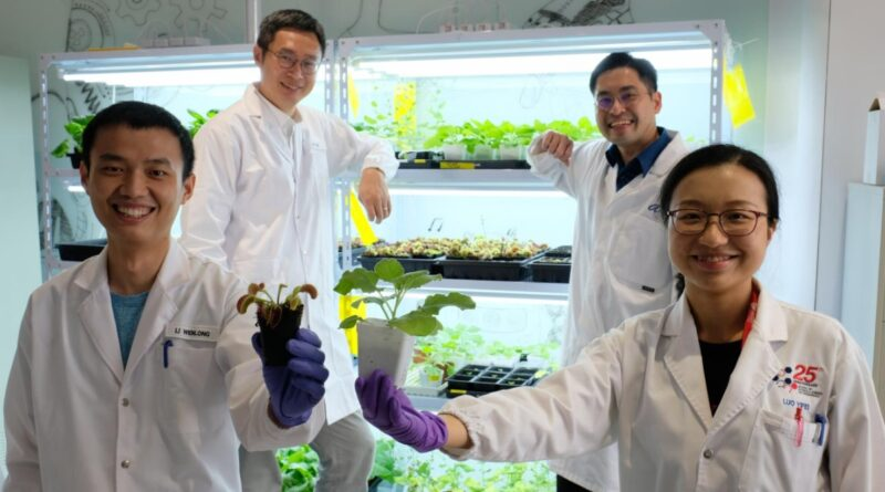 Singaporean Scientists Develop Device to 'Communicate' With Plants Using Electrical Signals